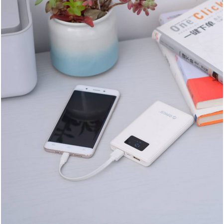 Orico  8.000mAh Powerbank met Smart Charge - LiPo Batterij