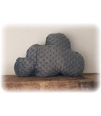 Wolkenkussen Grijs Minky