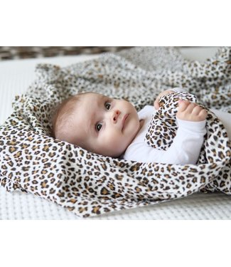 Swaddle Leopard