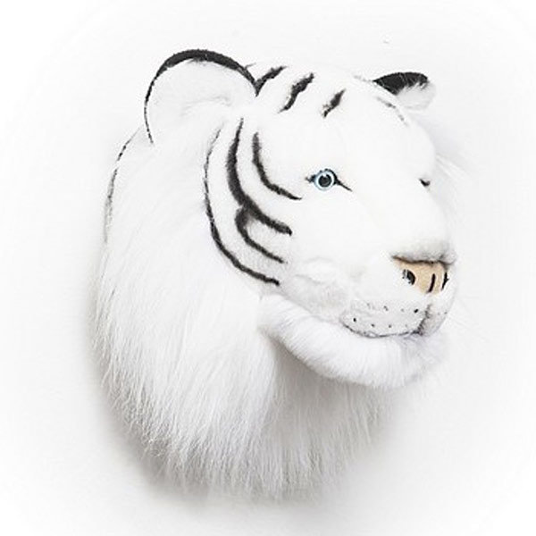 T/ête de tigre blanc Albert BIBIB