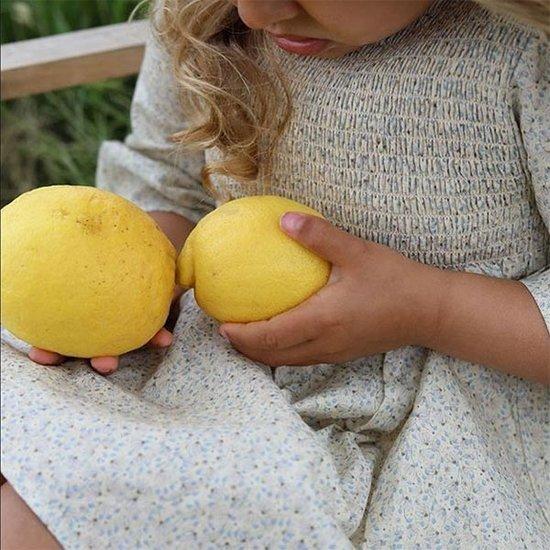 Konges Slojd Konges Slojd Emma dress Melodie Lemonade