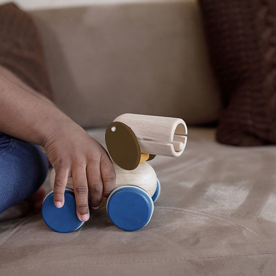 Plan Toys Plan Toys pull and push puppy