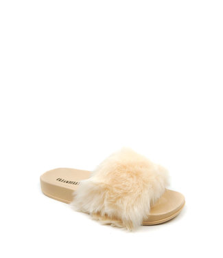Creamberry`s Slippers