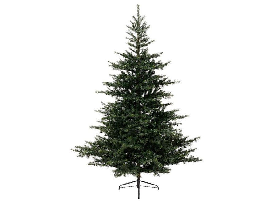 Grandis Fir Christmas Tree 300 cm (10Ft) - Green - 300 cm