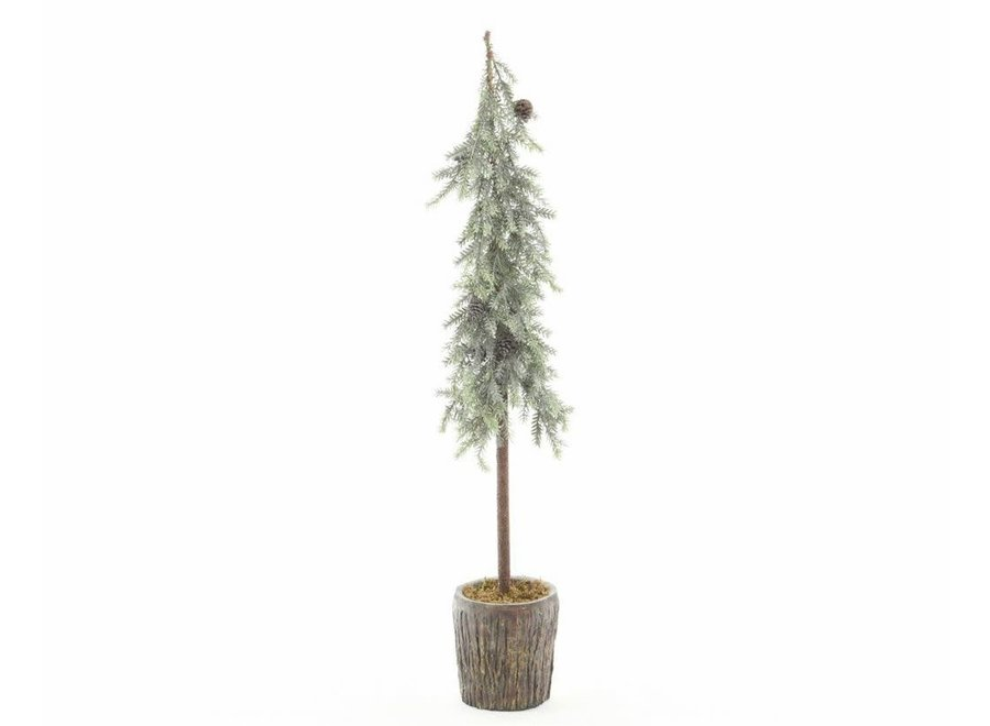 Frosted Alpine Mini Tree With Pinecones In Pot - Green/White - Dia24X82 cm