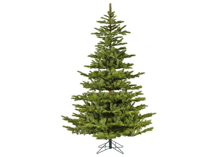 Koreana Spruce Christmas Tree 240 cm (8Ft) - Green - 240 cm