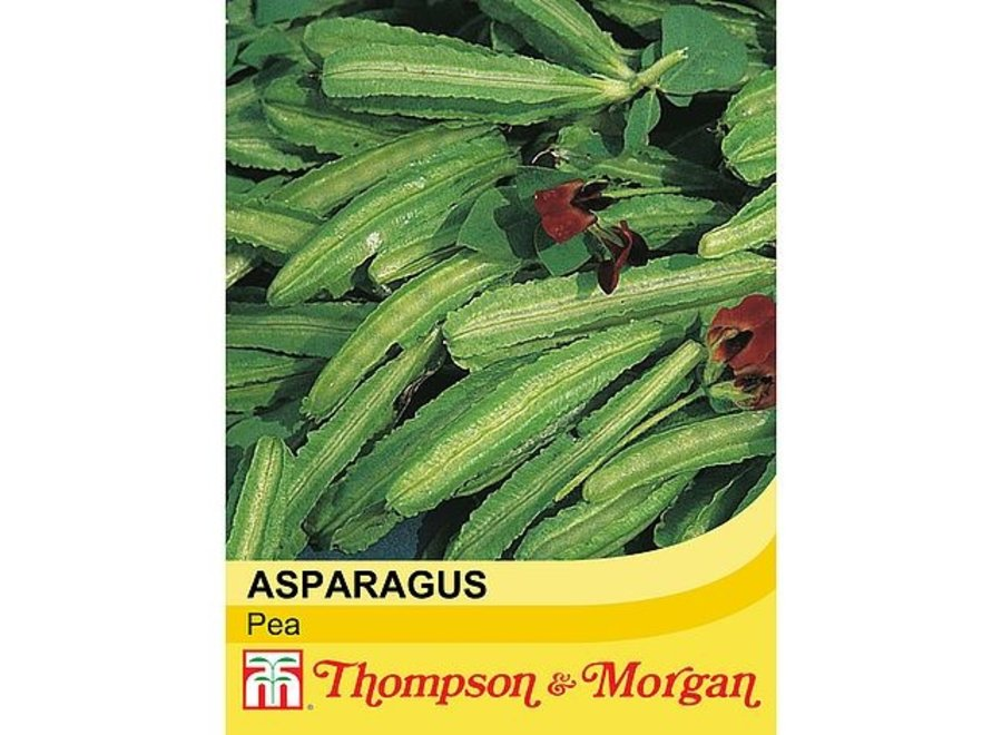 Asparagus Pea
