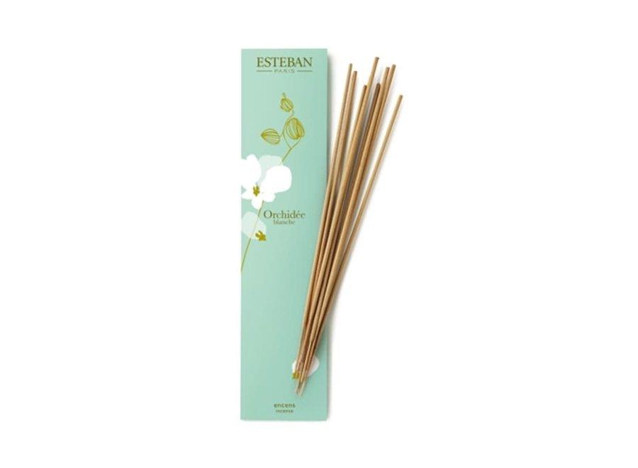 Bamboo Sticks Orchidee Blanche