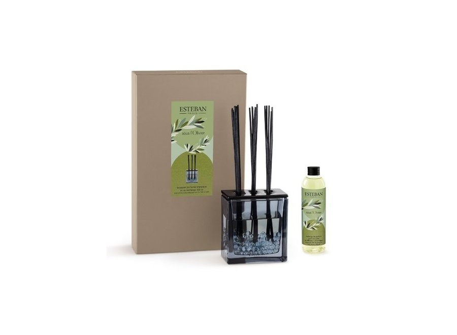 SCENTED DECORATIVE BOUQUET AND ITS 100ML REFILL SOUS L OLIVIER
