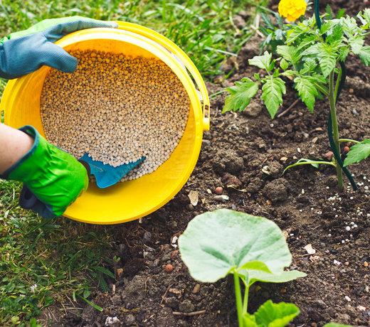 Fertiliser and Feeds
