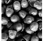 Honingnoppen Drop Arabische Gom -1 Kilo
