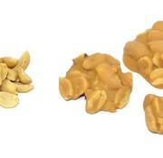 Rijkenberg Pindarots Caramel Zeezout Doos 2 Kg