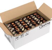 Guylian Zeevruchten Bonbons Doos 3 Kg