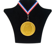 Steenland Chococlade Medaille Nr1+Lint Silo  10 Stuks