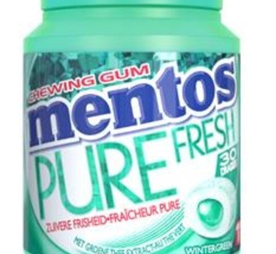 Mentos Winter Green Pure Fresh kauwgom -6 potjes
