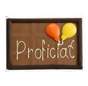 Choc & Croc Chocolade 'Proficiat' 220 gram Wenstablet