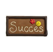Choc & Croc Chocolade 'Succes' 110 gram Wenstablet -Doos 8 stuks