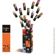 Galler Galler Box 25 Mini Bars  300gr -Doos 12 stuks