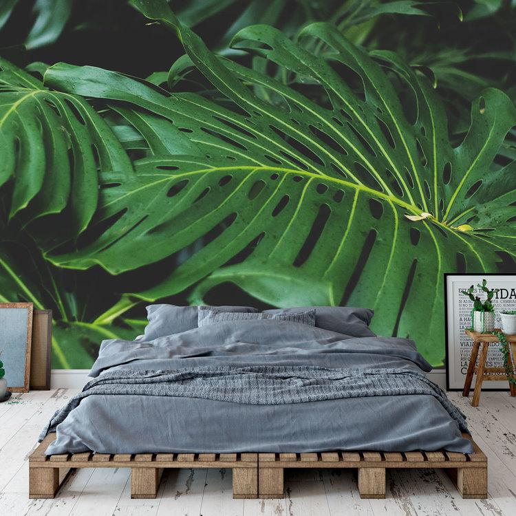 Daring Walls Behang Tropical leaves - 5