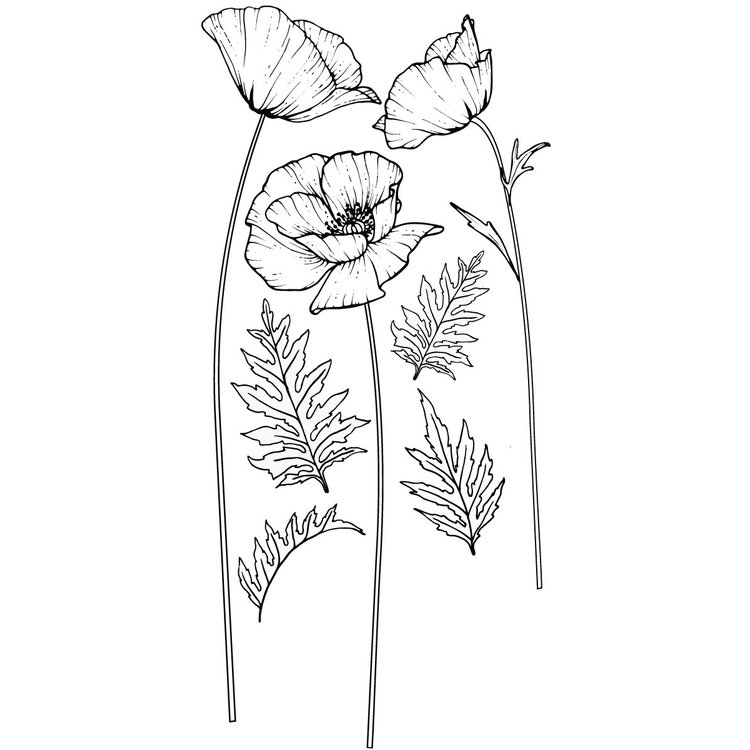 Daring Walls Muurstickers Flower drawing Poppy's-1