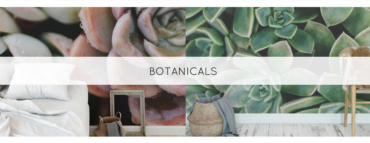 Behang tropical botanical