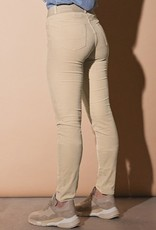 Para MI Pantalon Celine Elastic Velvet Beige Marble