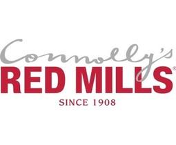 Red Mills greyhound