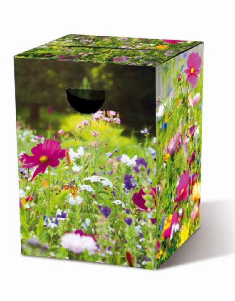 Remember Krukje Flower Meadow