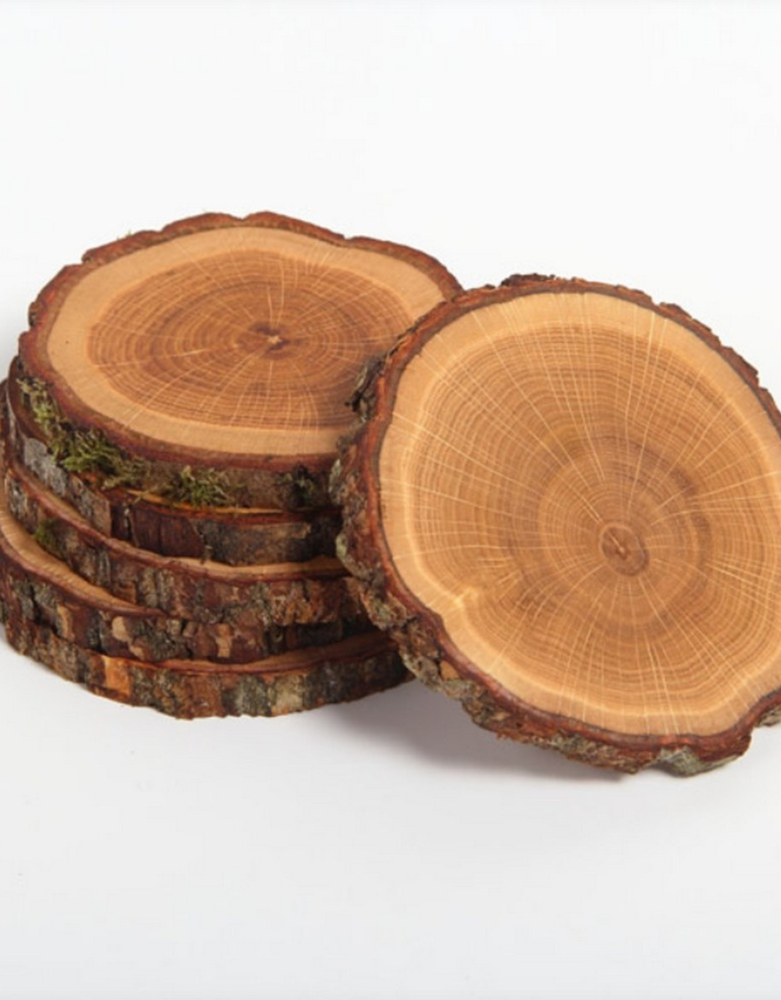 Rio Lindo Onderzetters Tree4Tea Eik 4 stuks