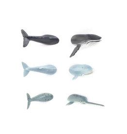Kikkerland Magneten Whale Butt
