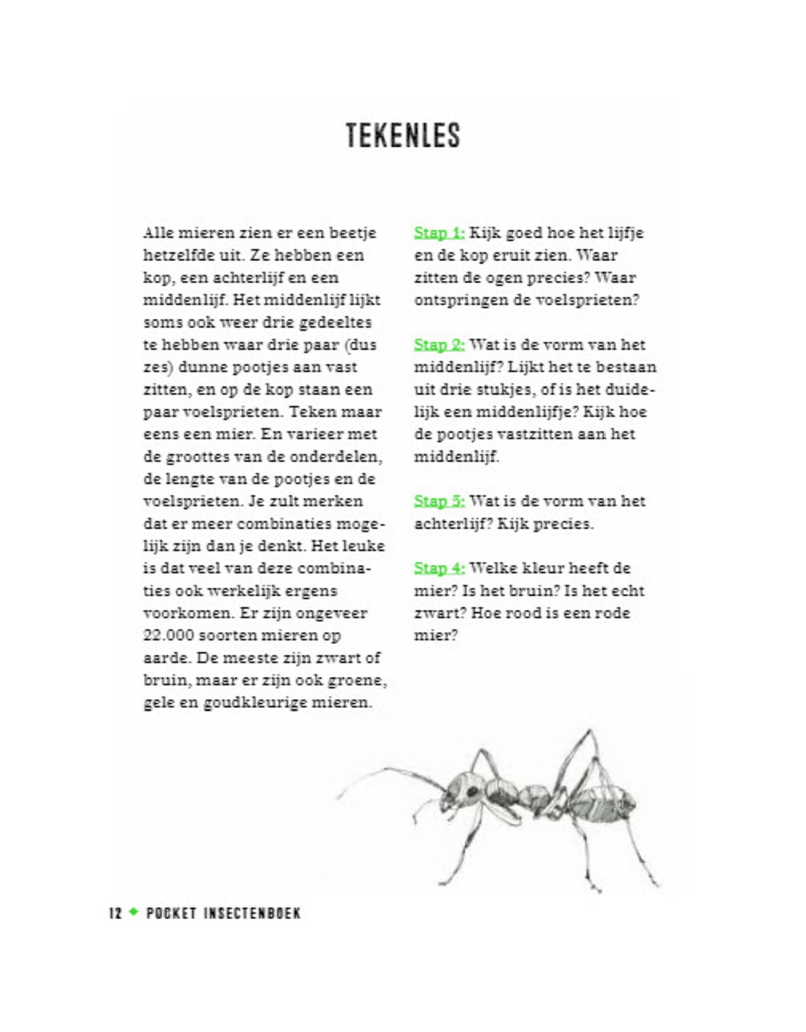 Uitgeverij Snor Insectenboek