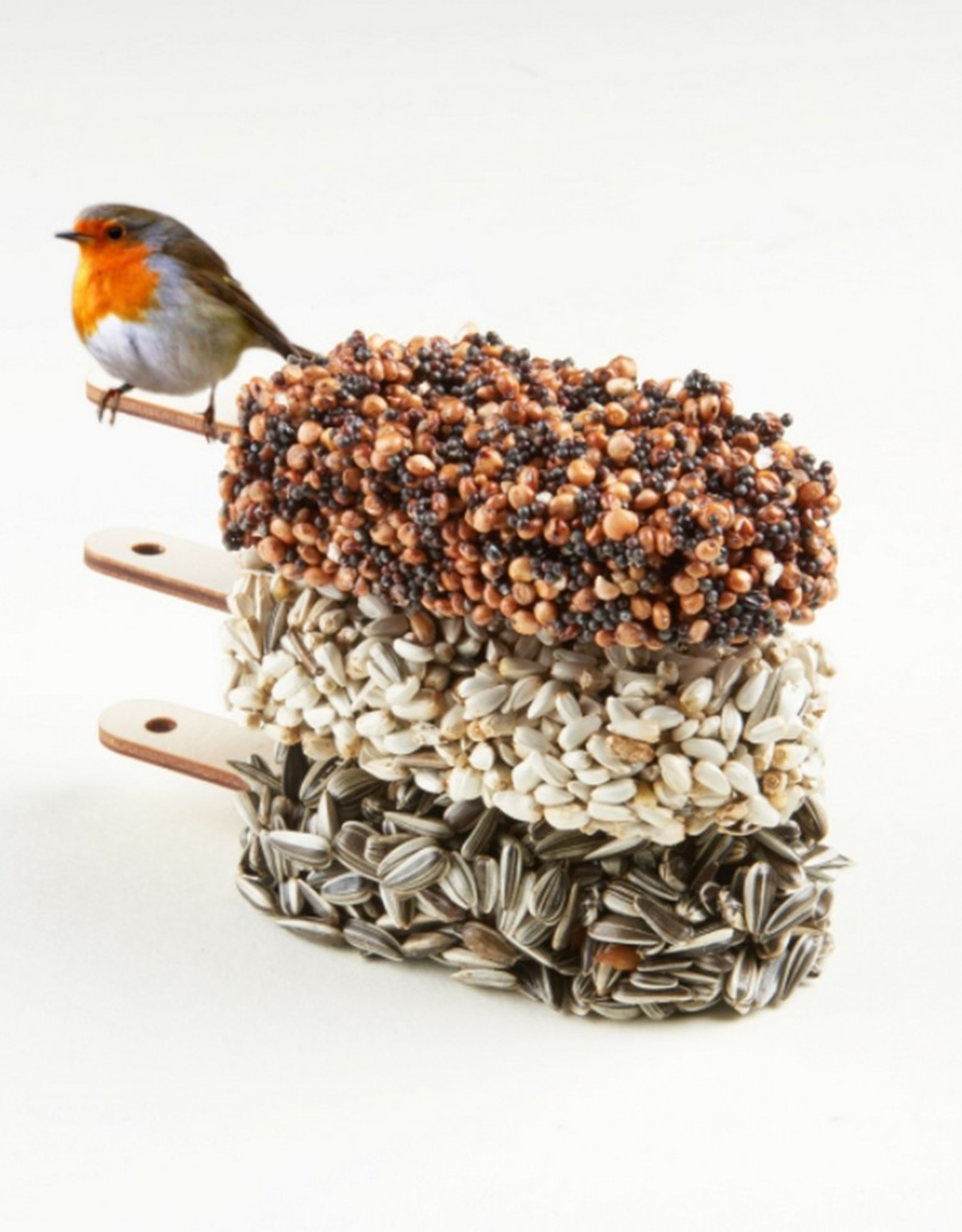 Studio Carmela Bogman Desserts for Birds Delicious Red