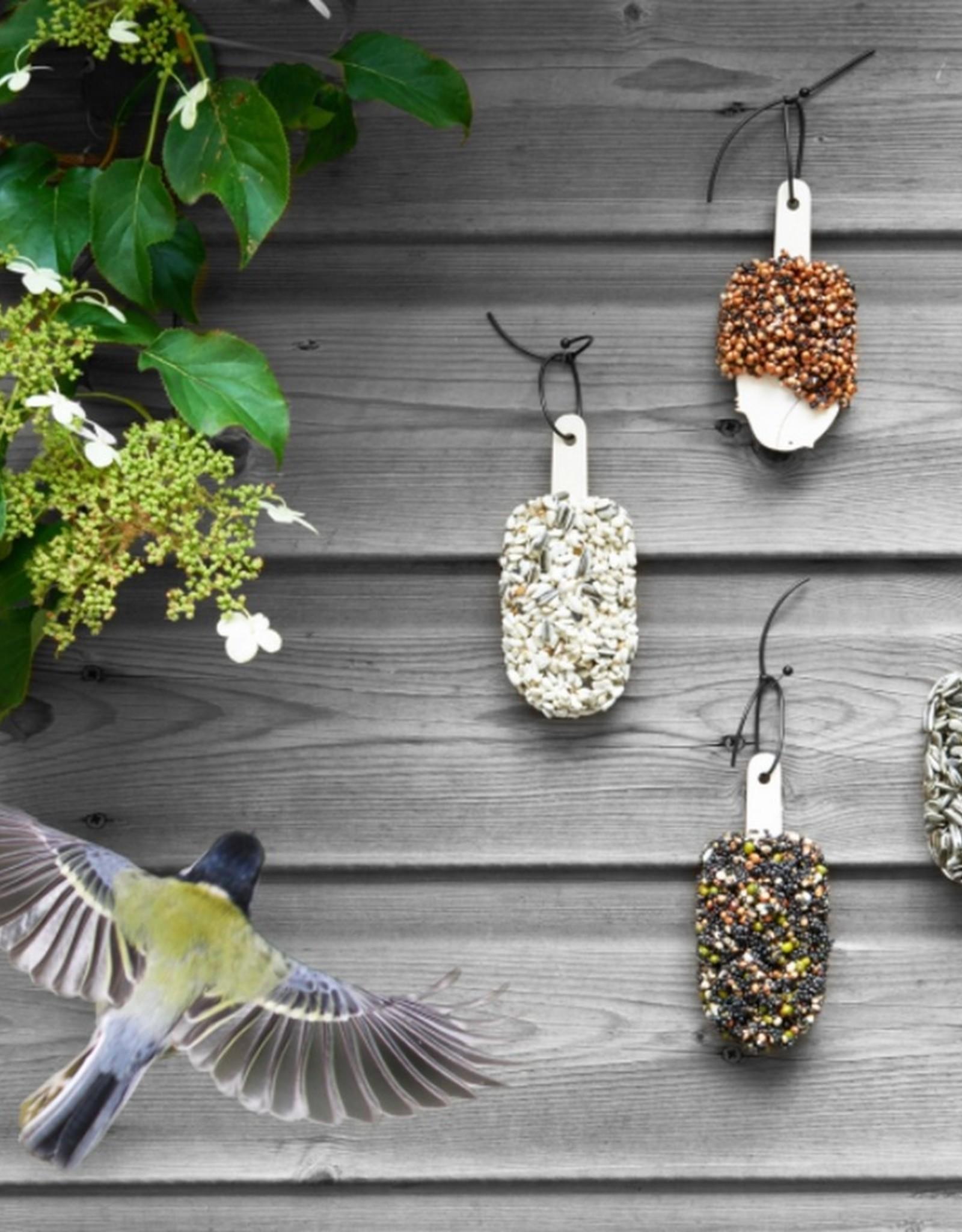 Studio Carmela Bogman Desserts for Birds Double Delicious