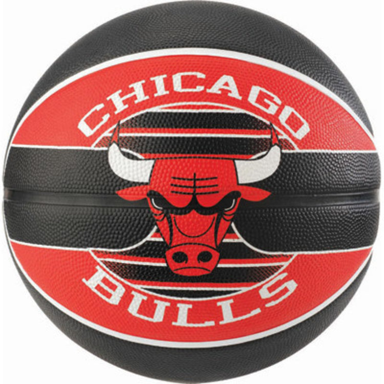 Spalding Spalding NBA Chicago Bulls Basketbal (7)