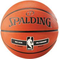 Spalding Silver NBA Outdoor Basketbal (7)