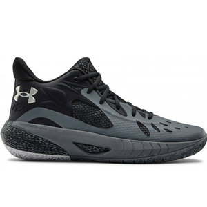 Under Armour Under Armour HOVR Havoc 3 Zwart Grijs