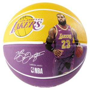 Spalding Spalding NBA Lebron James Basketbal (5)