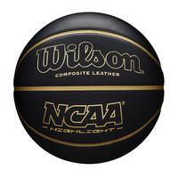 Wilson NCAA Highlight Indoor / Outdoor Basketbal (7)