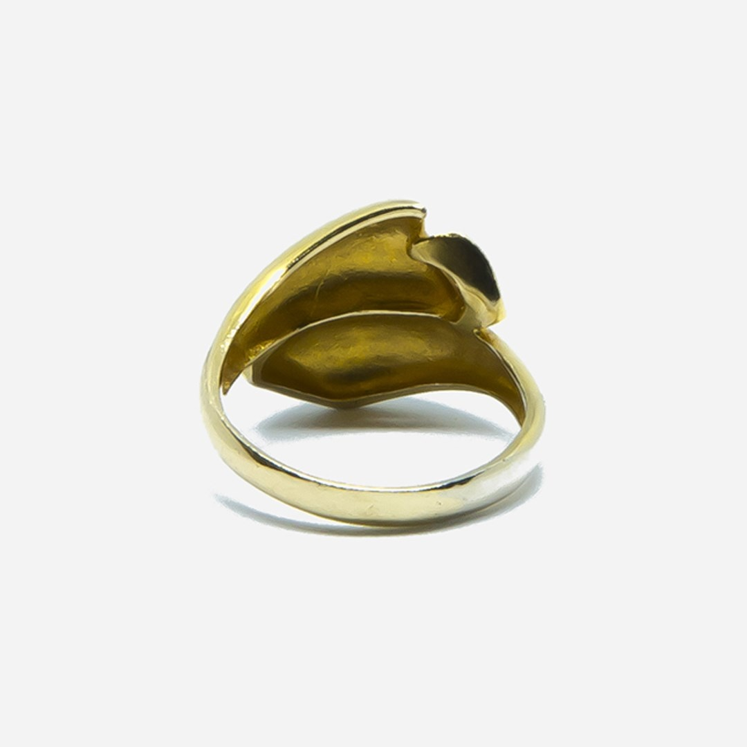 Ring bicolor-6