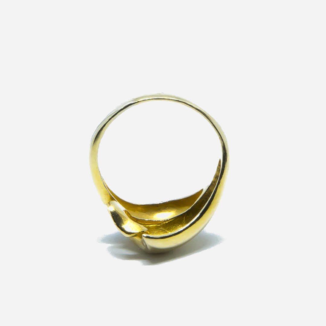 Ring bicolor-7
