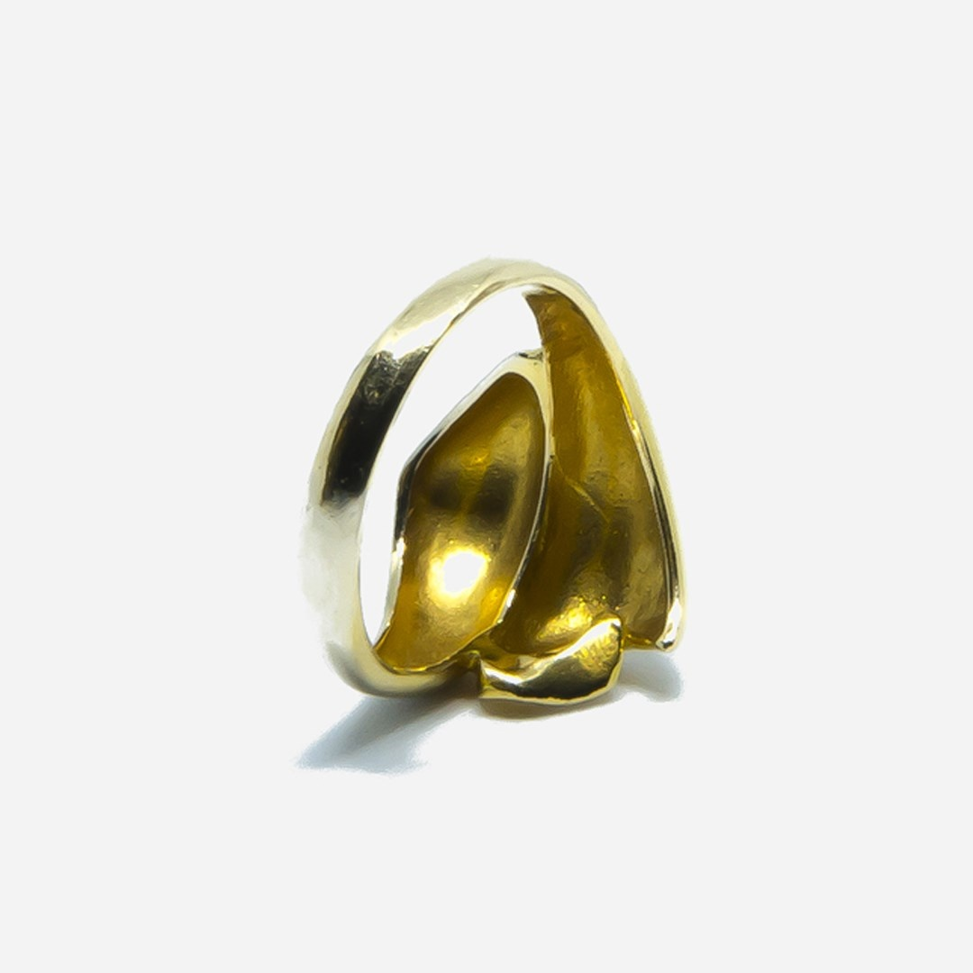 Ring bicolor-8