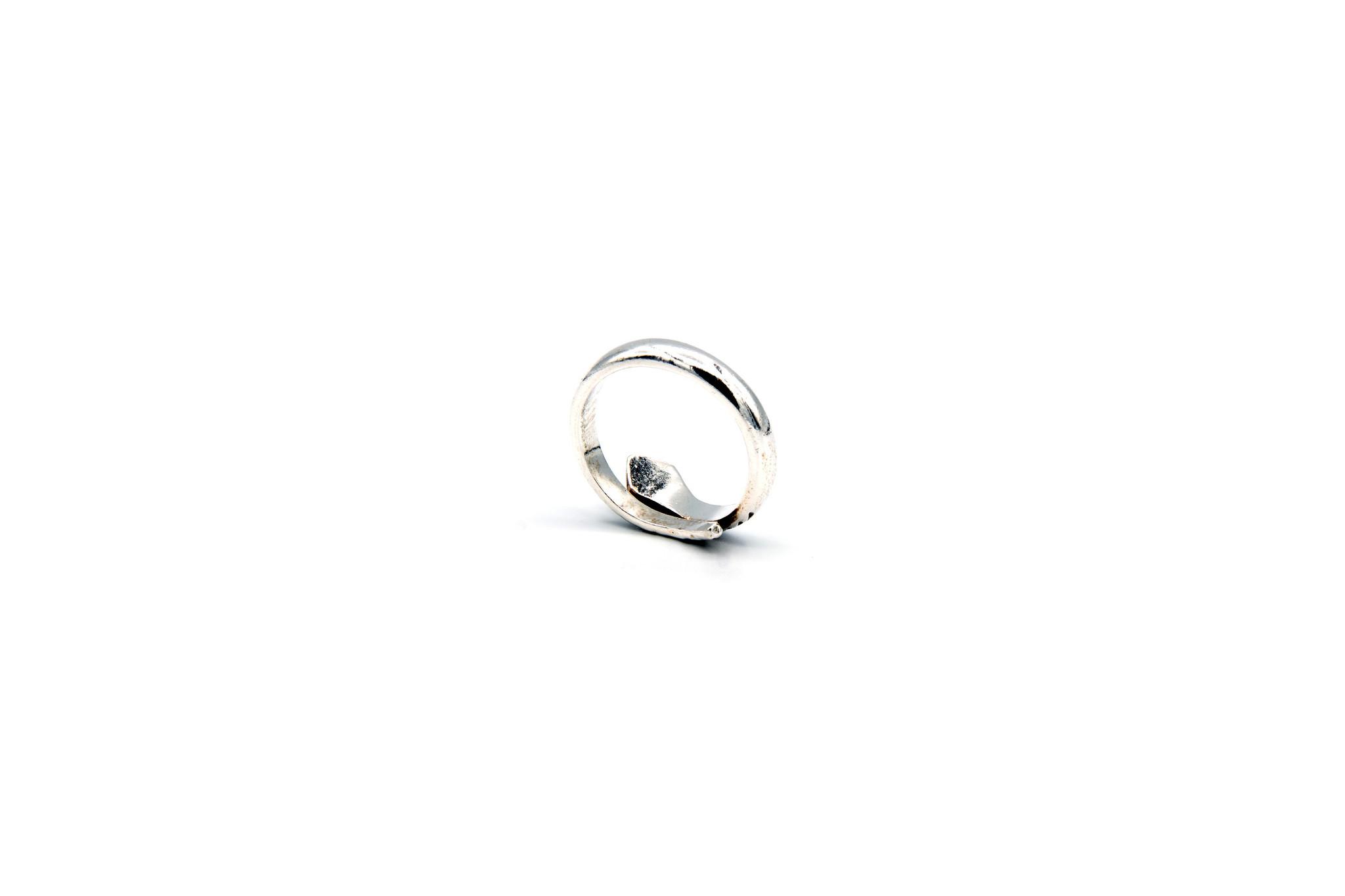Ring bewerkte slang-4
