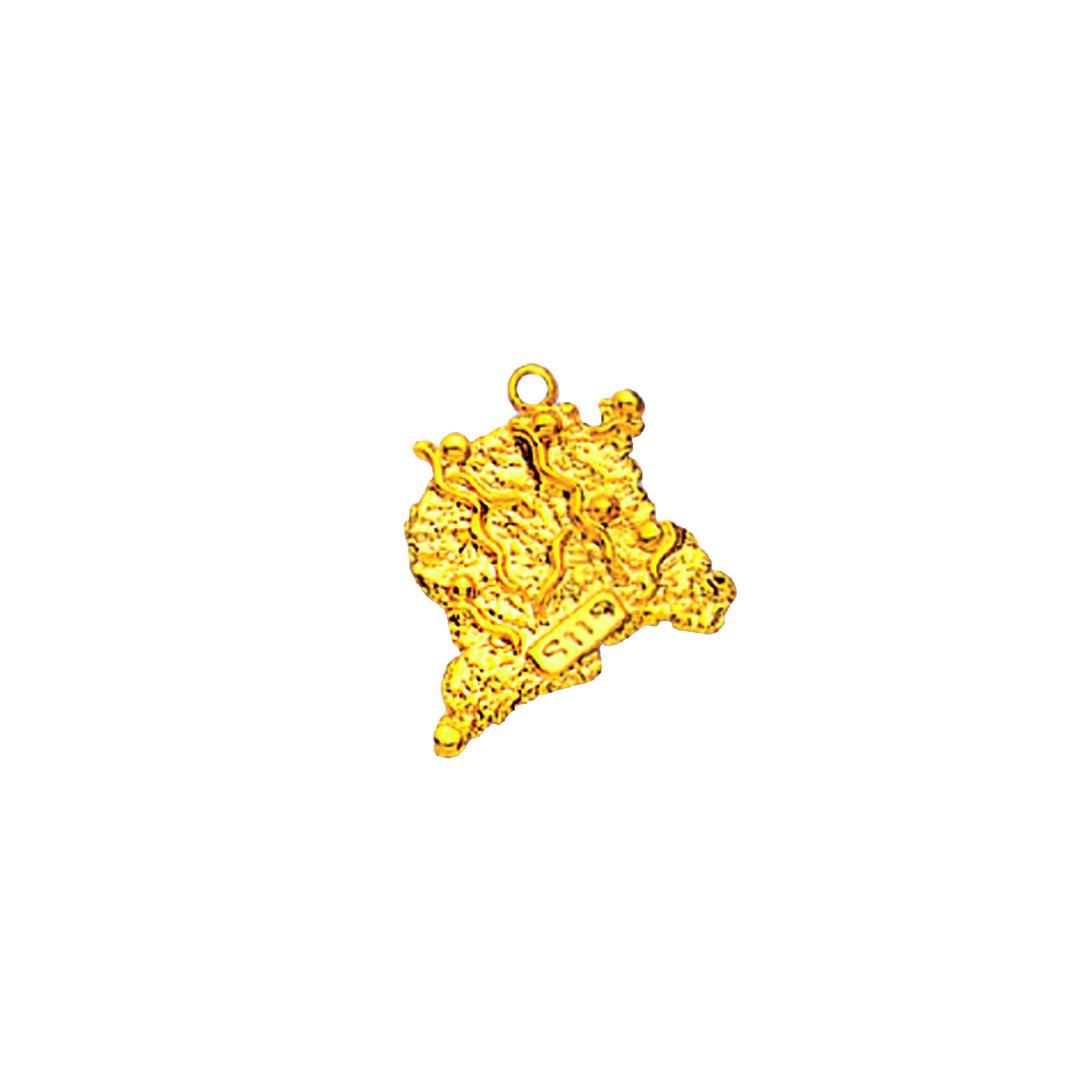 Hanger landkaart Suriname-1