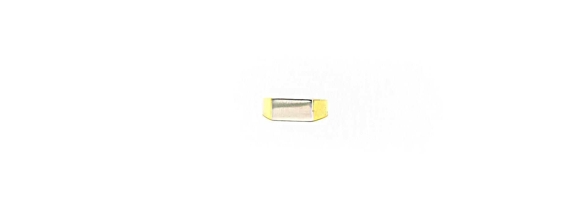 Ring zegel bicolor met mat effect