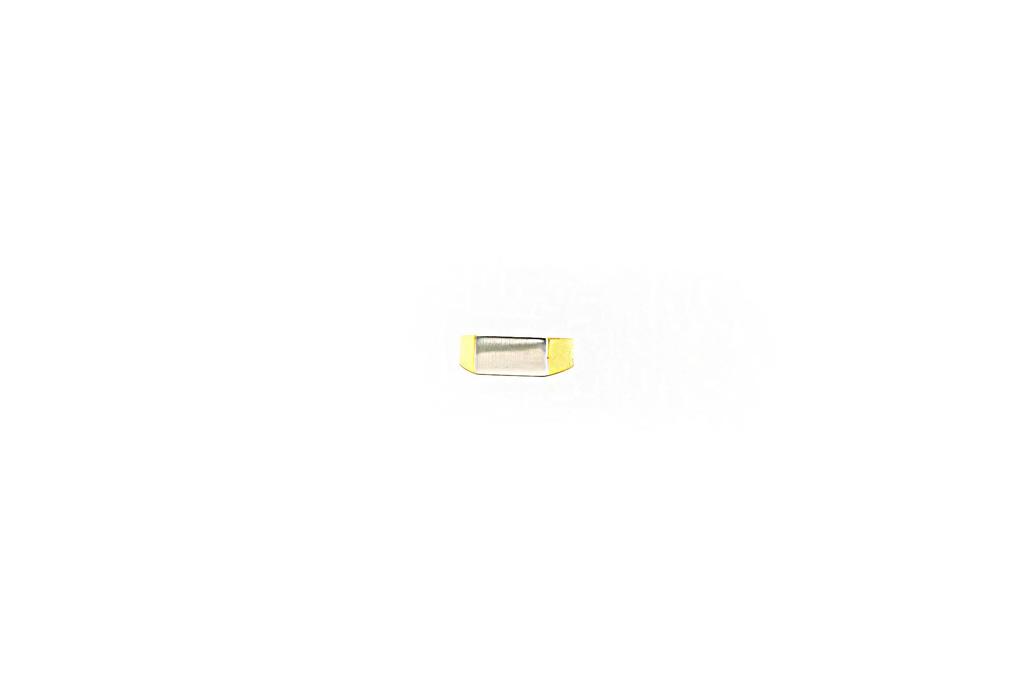 Ring zegel bicolor met mat effect-1