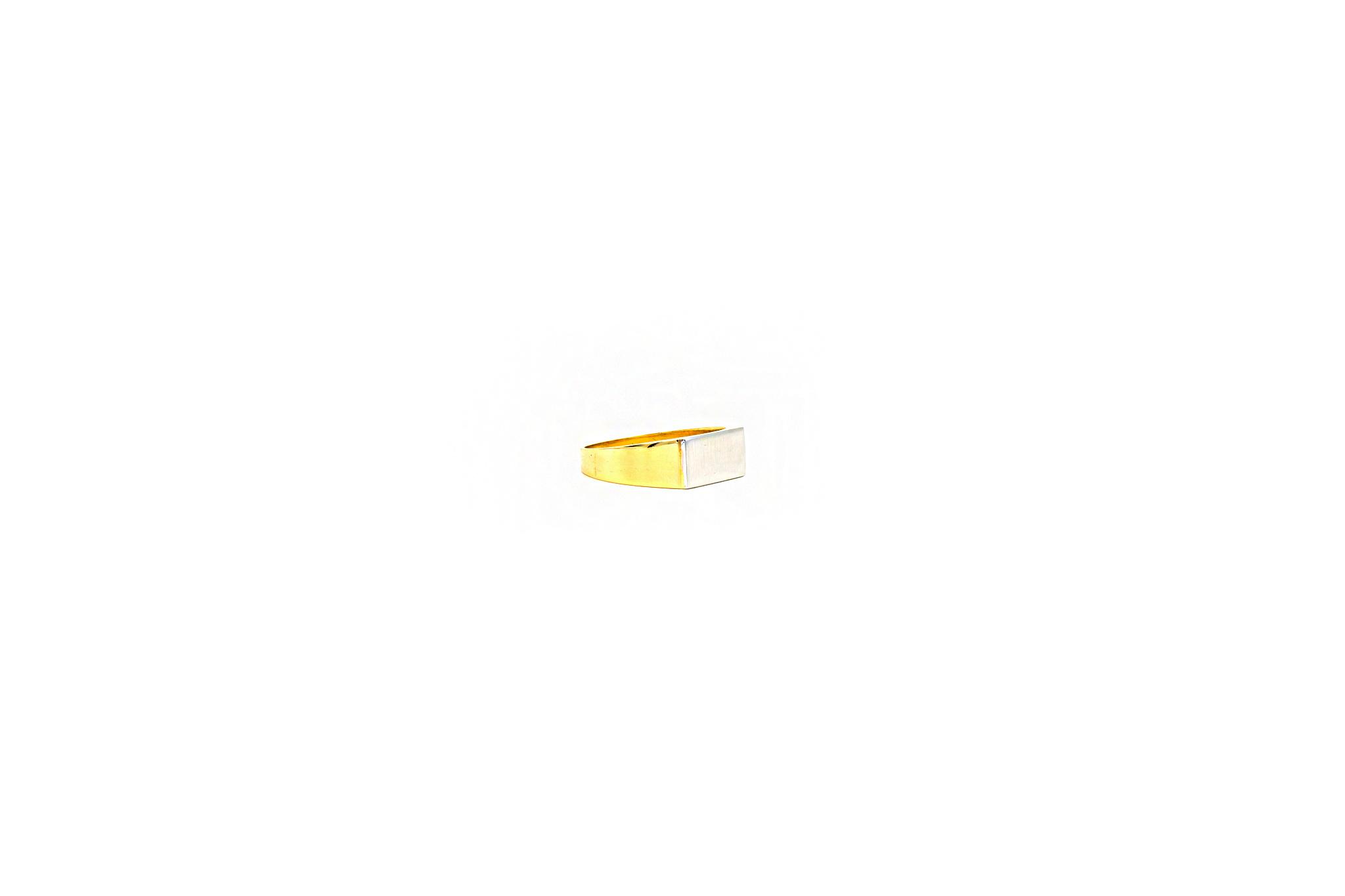 Ring zegel bicolor met mat effect-2