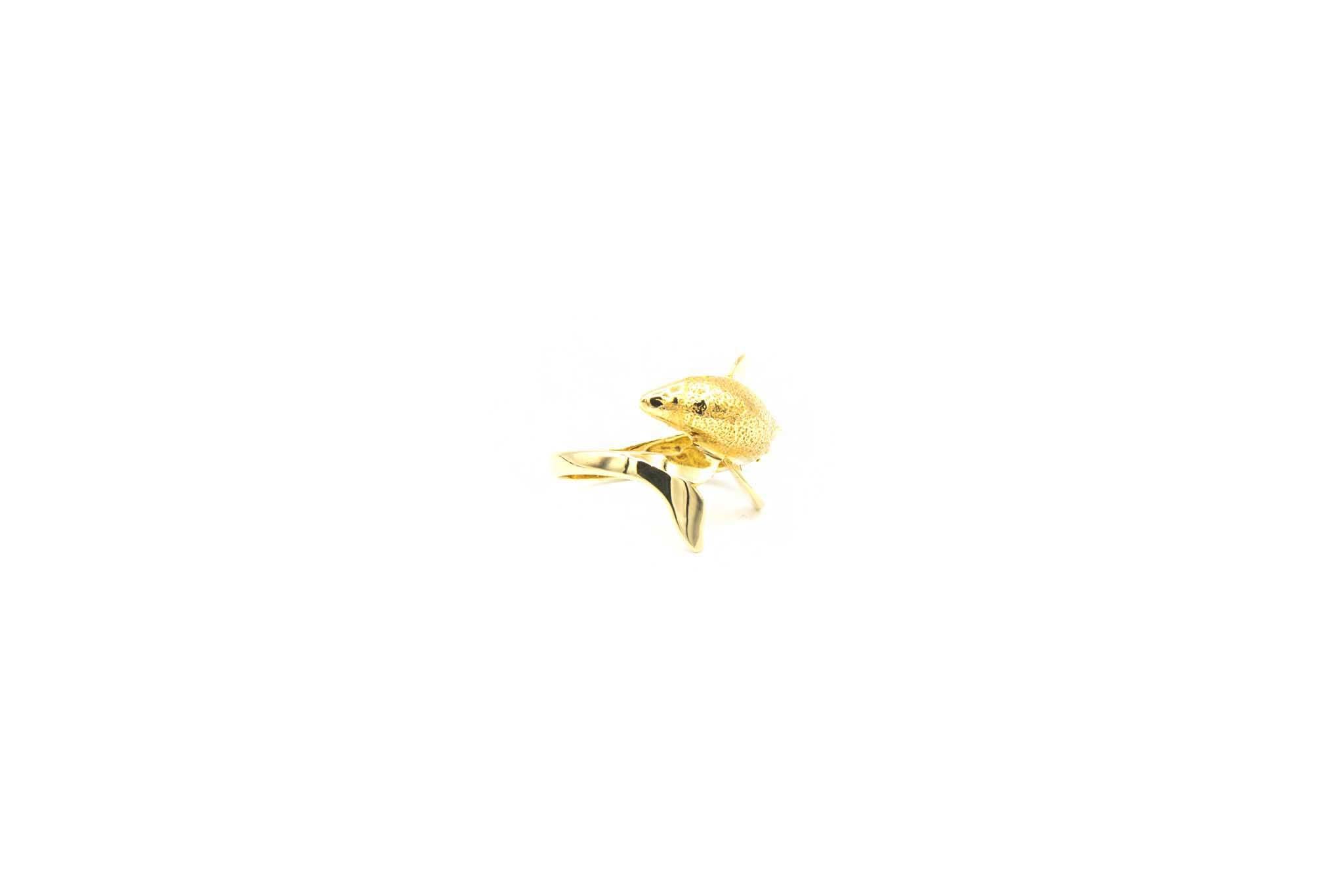 Ring dolfijn-2
