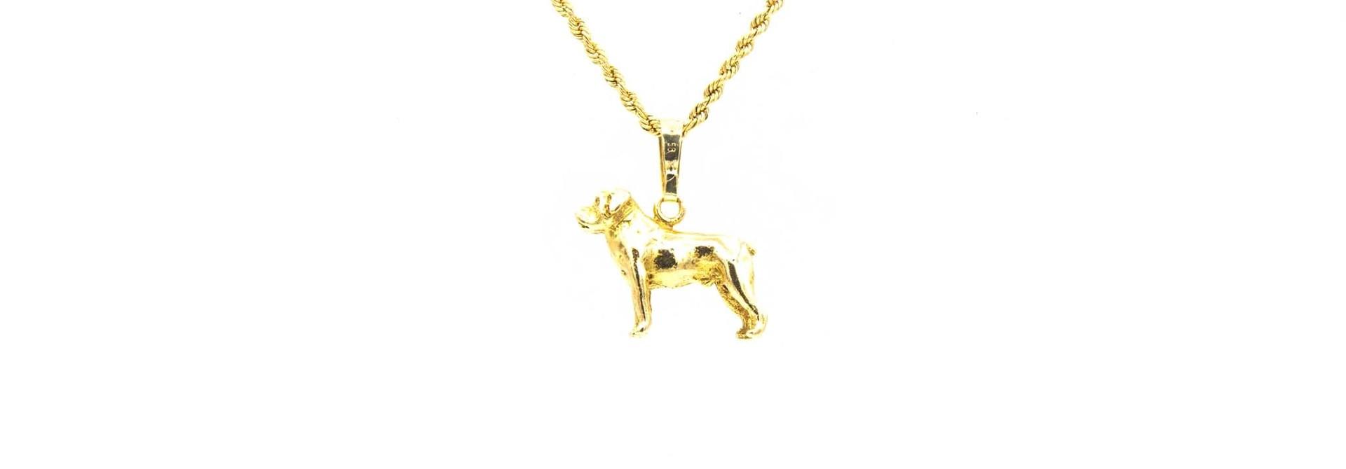 Hanger hond