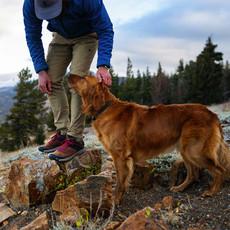 "Danner Danner Trail 2650 3"" Brown / Red"