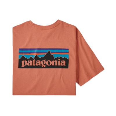 Patagonia Patagonia M's P-6 Logo Pocket Responsibili-tee Melow Mellon